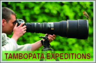 tambopata expeditions in sandoval lake reserve